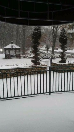snow at regency gardens - Regency Gardens Nursing Home