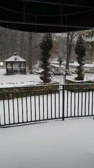 Snow At Regency Gardens   Regency Gardens Nursing Home